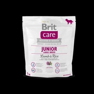 Brit Care Karma dla psa Junior Large Lamb